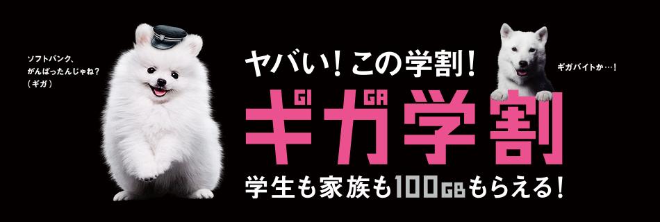 20160112_SB_gakuwari2016